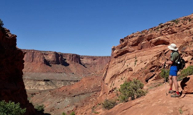 Upheaval Dome Syncline trail