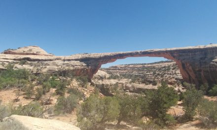 Natural Bridges Monument