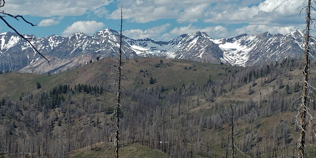 Fox Peak trail