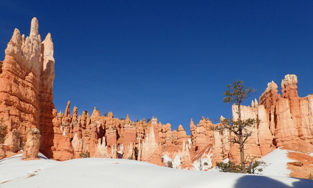 Bryce – Sunset Point Loop hike