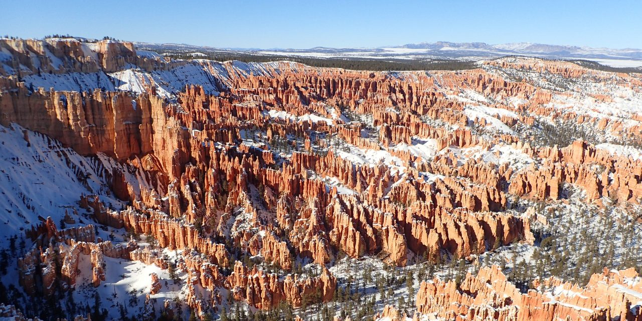 Bryce Winter Wonderland