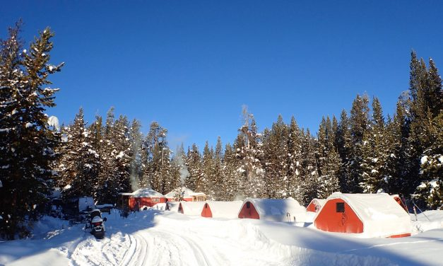 Day 1 – Norris Geyser Basin & Shakedown ski